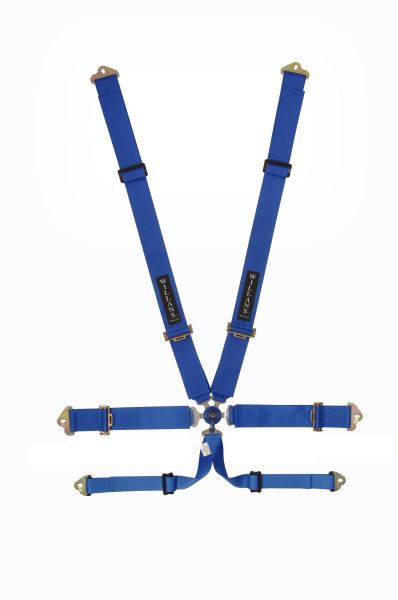 6 Point Harness Willans Club