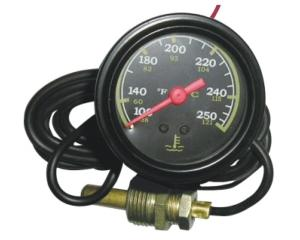 "Water Or Oil 2"" Capillary Temperature Gauge"